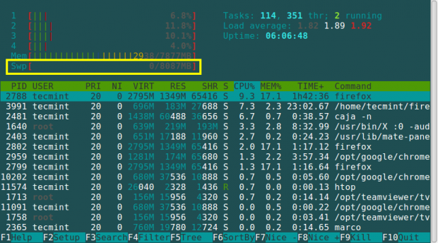 Htop Check Swap Usage