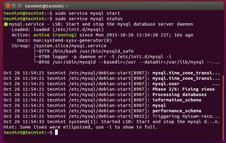 Start MySQ Database