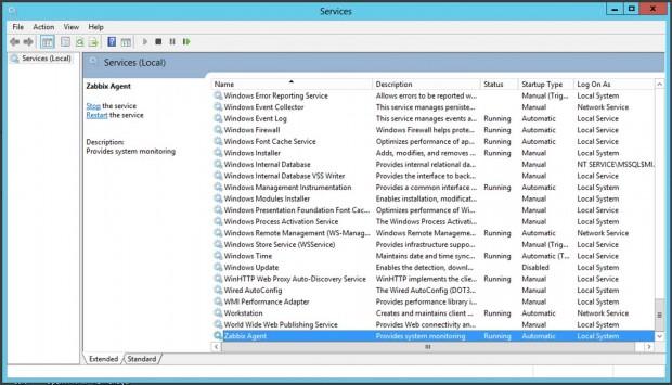 Zabbix Agent Windows Service