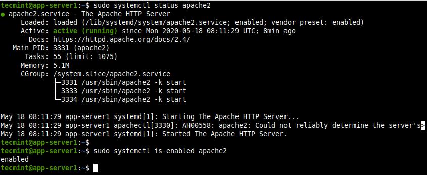 Check Apache Service