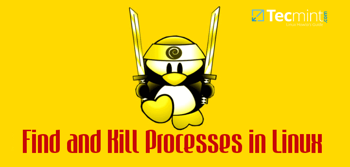 Find and Kill Running Processes in Linux