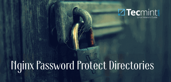 Nginx Password Protect Website