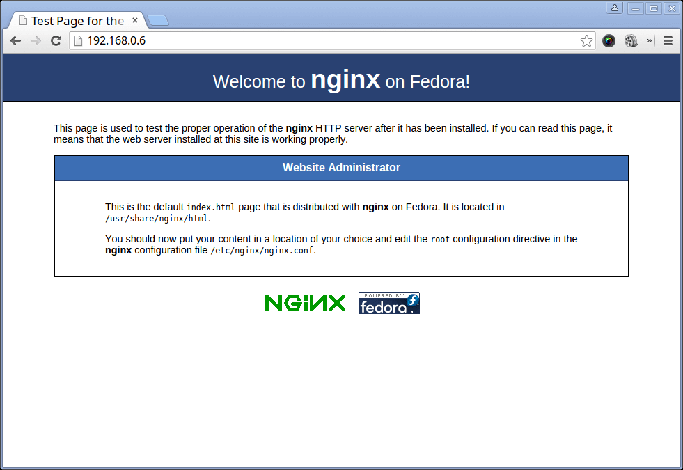 Verify Nginx Page