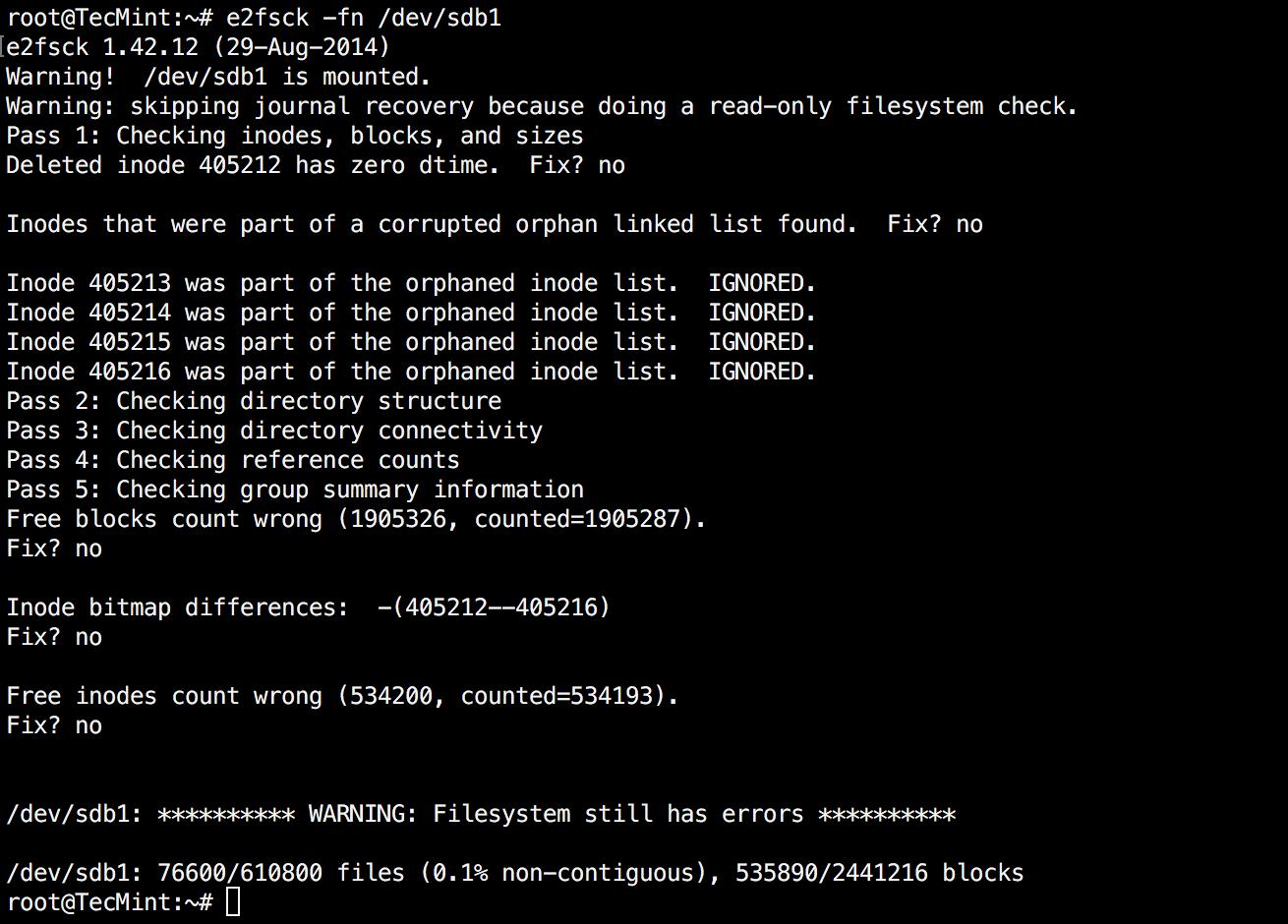 e2fsck With Errors