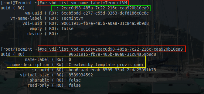 Check XenServer VDI Name and UUID