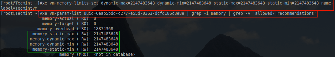 Increase XenServer Guest Memory Limit
