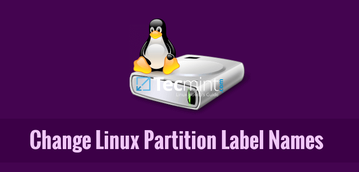 Change Modify Linux Partition Disk Names
