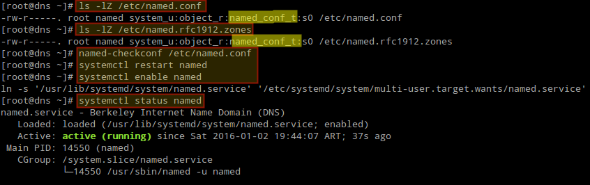 Configure and Start DNS Named Service