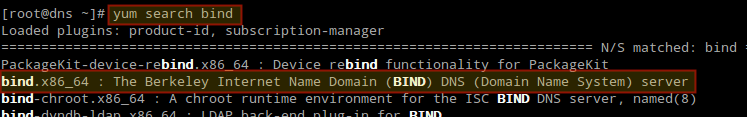 Search DNS Bind Package