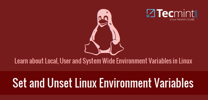 Set and Unset Linux Environment Variables