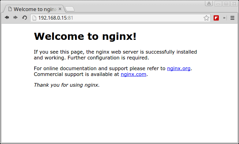 Verify Nginx Running under Docker Container