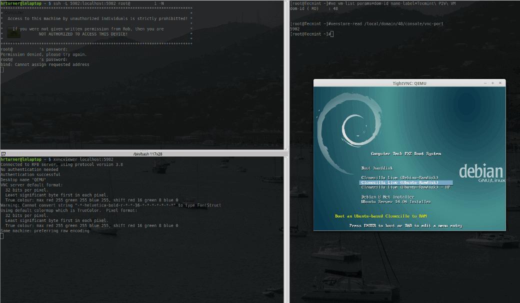 XenServer Virtual Console on VNC