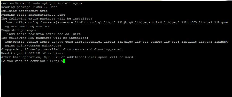 Install Nginx Web Server on Ubuntu 14.04 and Debian 8