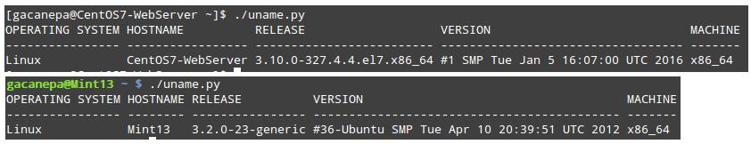 Check Linux Hostname Using Python Script