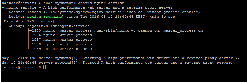Check Nginx Service Status