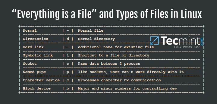 Everything is a File and Types of Files in Linux