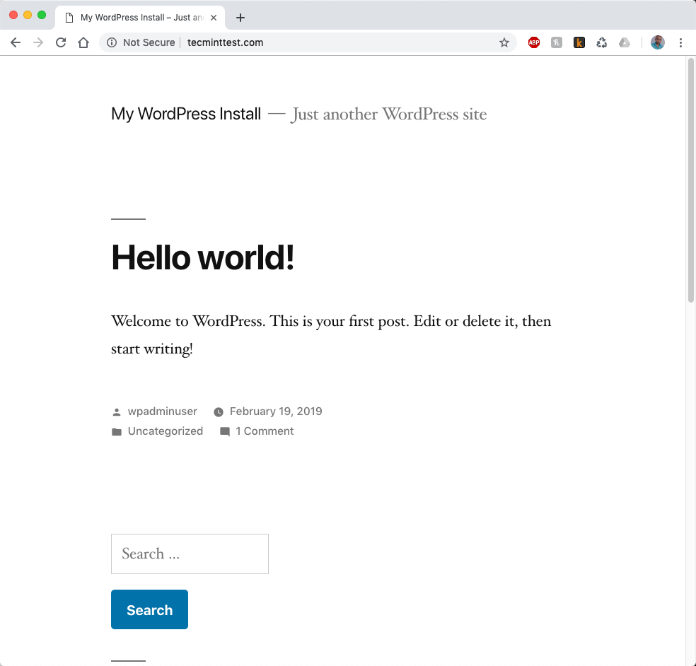 WordPress Website View