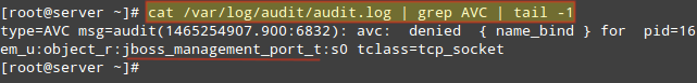 Check Linux Audit Logs