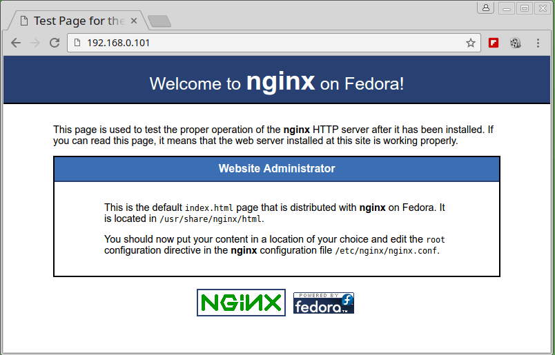 Check Nginx Web Page