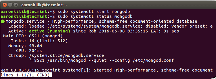 Start and Verify MongoDB Service