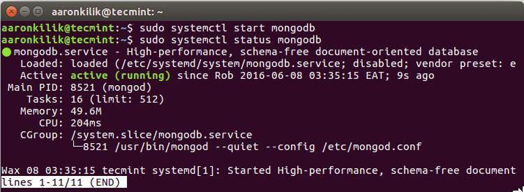 Start and Verify MongoDB Service