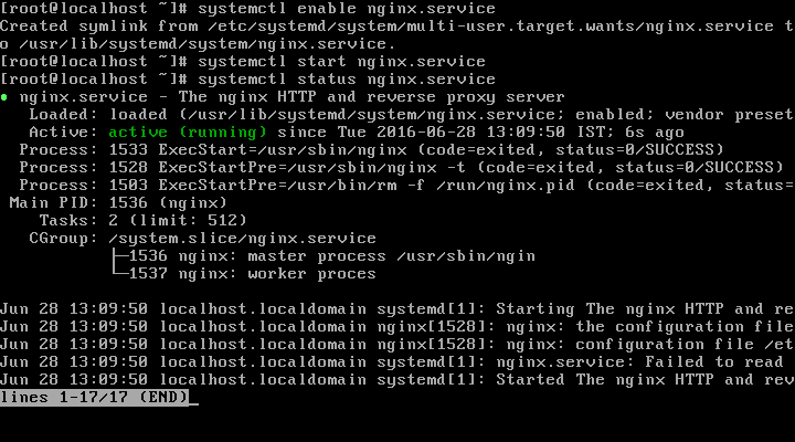 Start and Verify Nginx Web Server