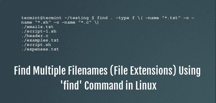 Find Multiple File Names in Linux