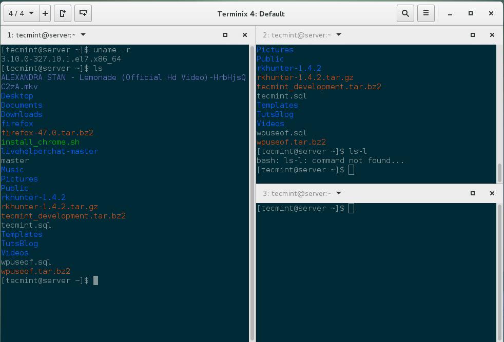 Terminix Terminal