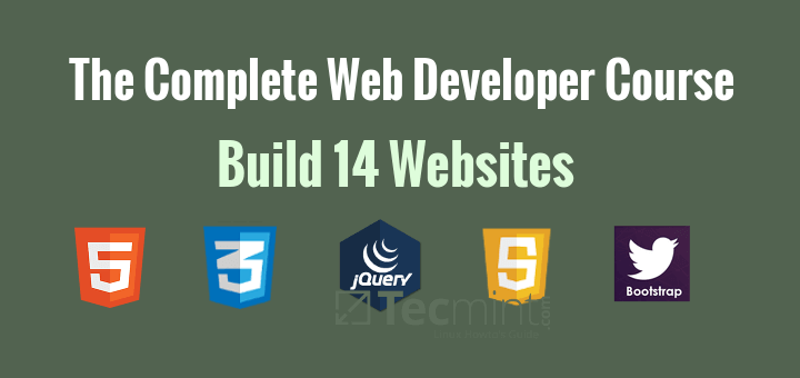 Learn Web Developer Course Online