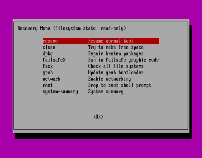 Ubuntu Recovery Menu - Resume Normal Boot