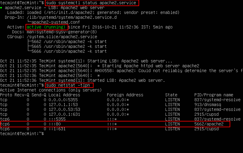 Check Apache Status And Port