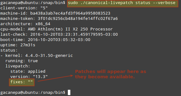 Check Livepatch Status in Ubuntu