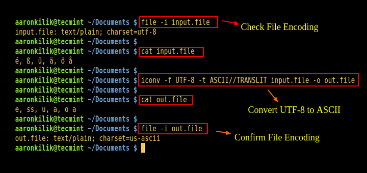 Convert Files to UTF-8 Encoding in Linux