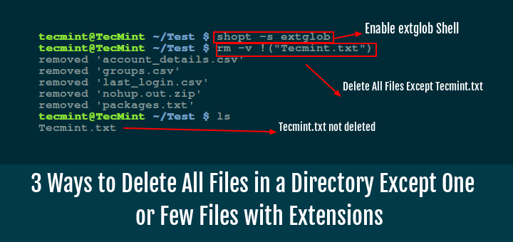 Linux Delete All Files in Directory Except One with Extensions