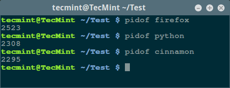 Find Linux Process PID
