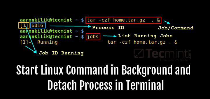 Start Command in Background and Detach Process in Linux