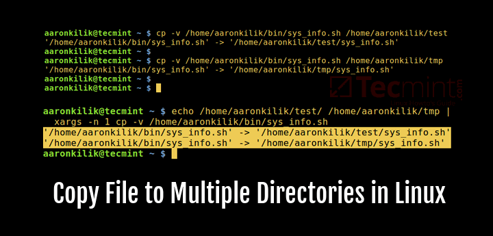 Copy a File to Multiple Directories in Linux