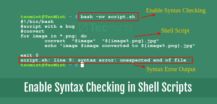 Enable Syntax Checking in Shell Scripts