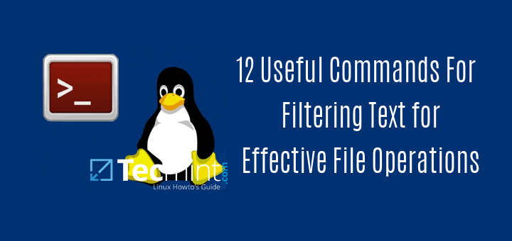 Useful Commands For Effective File Operations in Linux