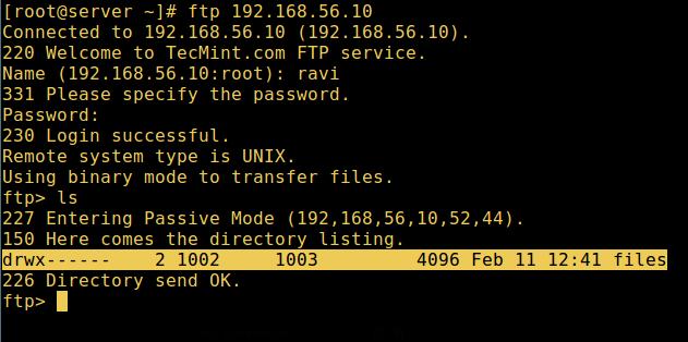 FTP User Home Directory Login Successful