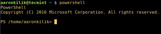 Start Powershell in Linux