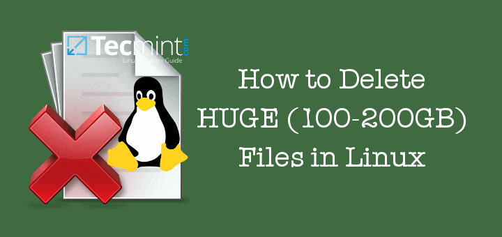 how to delete files linux