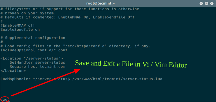 Save a File in Vi / Vim Editor in Linux