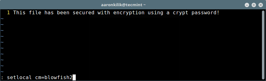 Set Strong Encryption on Vim File