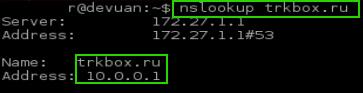 Watch DNS Lookup
