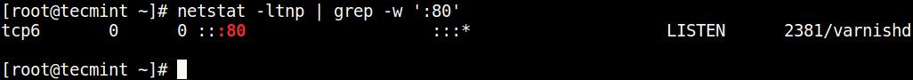 Controlla la porta usando il comando netstat