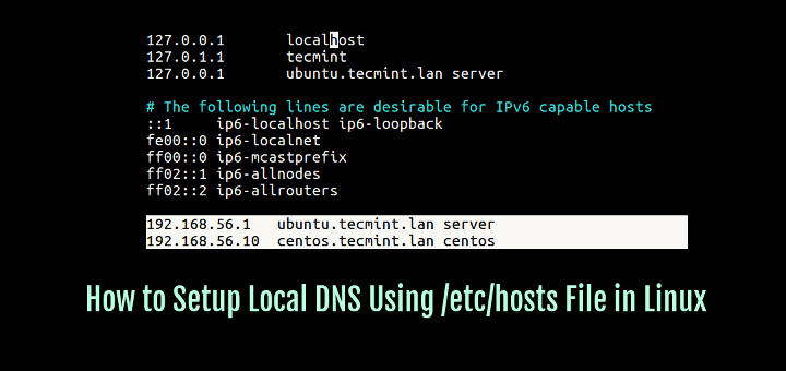 Setup Local DNS Using /etc/hosts File in Linux