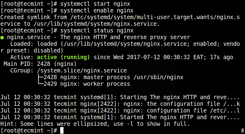 Start and Enable Nginx at Boot