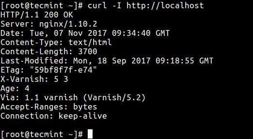 Test Varnish Cache on Nginx