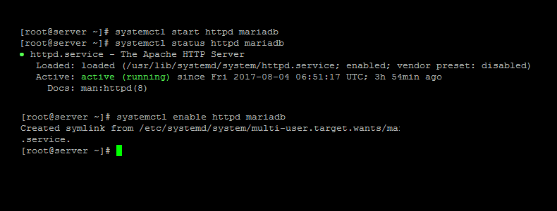 Start Apache and MariaDB Service